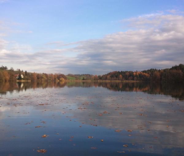 Der Degersee - ein kleiner, ruhiger Badesee im Bodenseekreis (D).