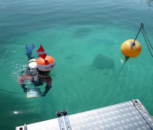 Beim Monitoring im Attersee kommt zum ersten Mal das Forschungsboot des Kuratoriums Pfahlbauten zum Einsatz. (Bild: H. Pohl - Kuratorium Pfahlbauten)