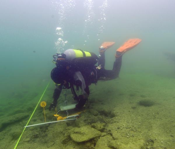 Monitoring der zum Welterbe gehörenden Pfahlbauten von Litzelberg Süd. (Bild: Kuratorium Pfahlbauten)