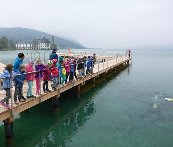 Schulklassenbesuch bei den Arbeiten an den Pfahlbauten von Seewalchen 2014