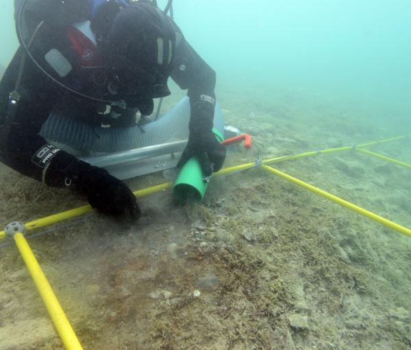 Ausgrabung in Seewalchen I (Oktober 2015).