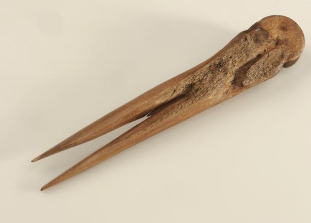 Flachshechel aus Weyregg, heute im Naturhistorischen Museum Wien. (Bild: NHM Wien)