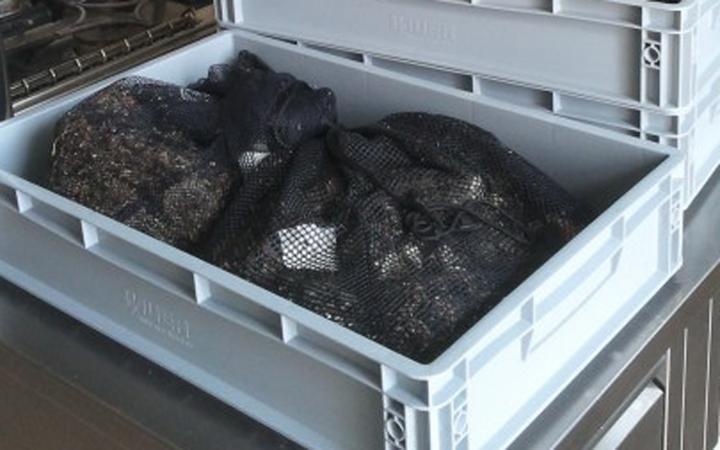 Fundmaterial der aktuellen Grabung aus Seewalchen. (Bild: Seidl da Fonseca - Kuratorium Pfahlbauten)