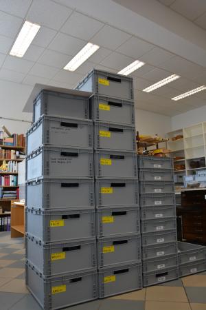 Die Kisten mit den Funden der Unterwassergrabungen von Seewalchen 2015 (rechts) und Weyregg II 2016 (links). (Bild: Jetzinger - OÖLM)