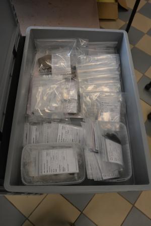 Funde über Funde, fein säuberlich verpackt. (Bild: Jetzinger - OÖLM)