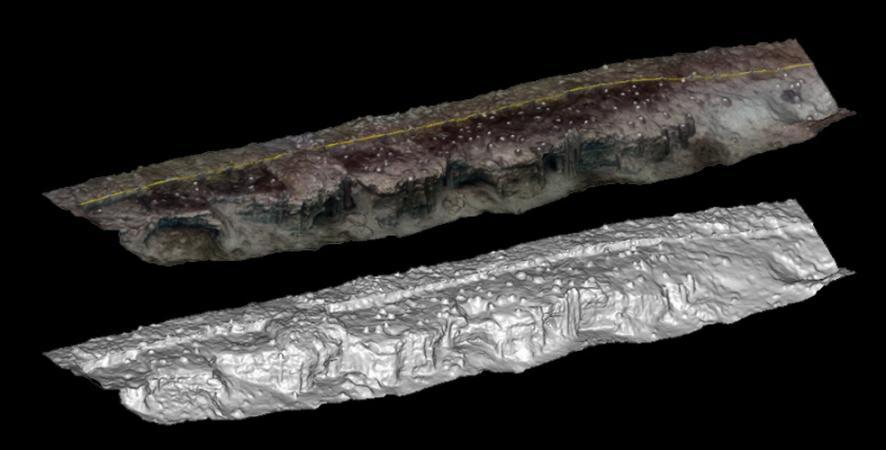 Überblick über die Abbruchkante der Sprungturmgrube. Im schattierten Geländemodell sind die einzelnen Pfähle bereits deutlich zu erkennen. (Bild: R. Wessling - Kuratorium Pfahlbauten)