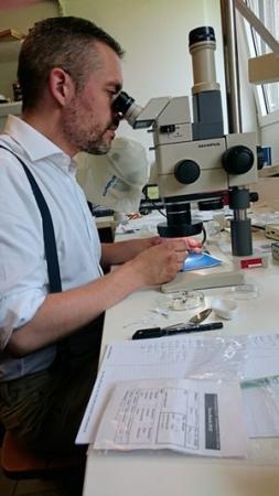 Andreas Heiss, Archäobotaniker des ÖAI, bei der Arbeit.