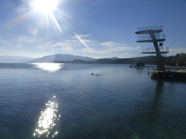 Die Pfahlbaustation Seewalchen I ist die erste umfassende unterwasser-archäologische Ausgrabung in Österreich seit beinahe 30 Jahren. (Bild: Jutta Leskovar - OOeL - Kuratorium Pfahlbauten)