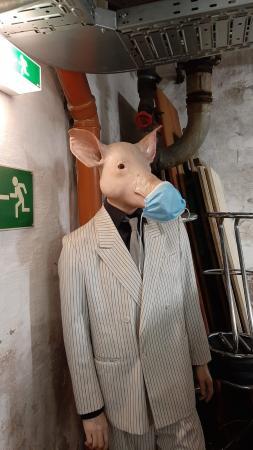 """Schaufensterpuppe mit Schweinekopf: """"der Schweinemann"""", ein Gruß der Präparator*innen."""