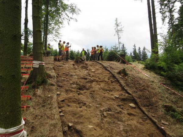 Eine der Ausgrabungesstätten auf dem Buchberg. (Bild: Institut für Urgeschichte und Historische Archäologie)