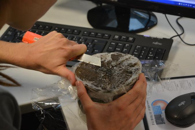 Nur wenn die Hölzer gefroren sind, kann die Oberfläche den Bedürfnissen der WissenschaftlerInnen entsprechend aufbereitet werden. (Bild: M. Grabner- BOKU)