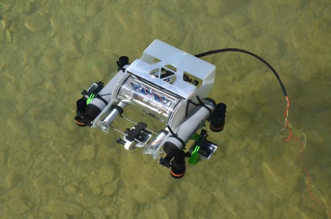 Eckbert-II beim Einsatz im Mondsee (Bild: Archaeonautic)