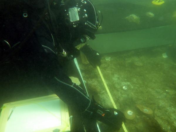 Forschungstaucher Markus beim Vermessen unter Wasser. (Bild: OÖLM - Kuratorium Pfahlbauten)