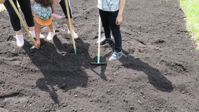 Die Kinder arbeiten fleißig im Garten. (Bild: Kuratorium Pfahlbauten)