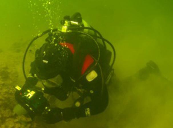 Henrik Pohl, der Grabungsleiter in Seewalchen, beim Fotografieren unter Wasser. (Bild: Kuratorium Pfahlbauten)