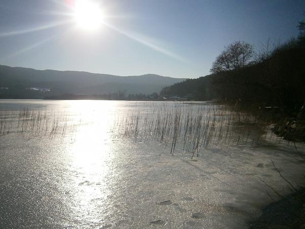 Das Nordufer des Keutschacher Sees im Winter 2015 (Bild: Marion Schaschl)