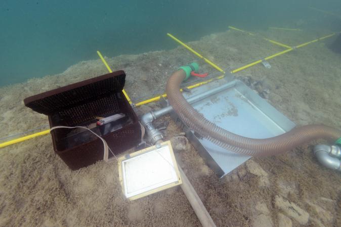 Die Grabungsfläche unter Wasser ist in Quadranten eingeteilt (excavation area). (Foto: Kurtaorium Pfahlbauten)