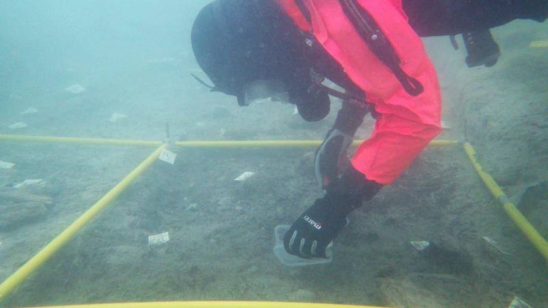 Forschungstaucherin Esther Unterweger bei der Entnahme einer Sedimentprobe aus der Kulturschicht.