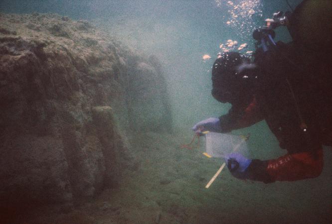 2003 und 2004 konnten nach langer Zeit endlich wieder archäologische Dokumentationen an den Salzkammergut-Pfahlbauten erfolgen. (Foto: Dworsky - Reitmaier)