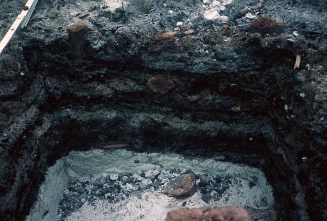 Profil in der Pfahlbau-Siedlung Weyregg II im Attersee. (Bild: Dworsky - Reitmaier)