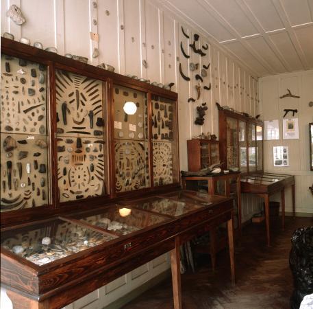 Viele regionale Sammlungen von Pfahlbaufunden entstanden im 19. Jhd. und Anfang des 20. Jhd. Hier die Sammlung Irlet in Twann, die auch heute noch im Originalzustand zu besichtigen ist. (Bild: Palafittes)