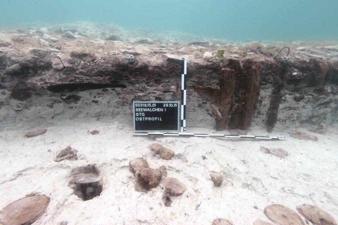 Das Ostprofil der Sprungturmgrube in Seewalchen zu Grabungsende. (Bild: H. Pohl - Kuratorium Pfahlbauten)
