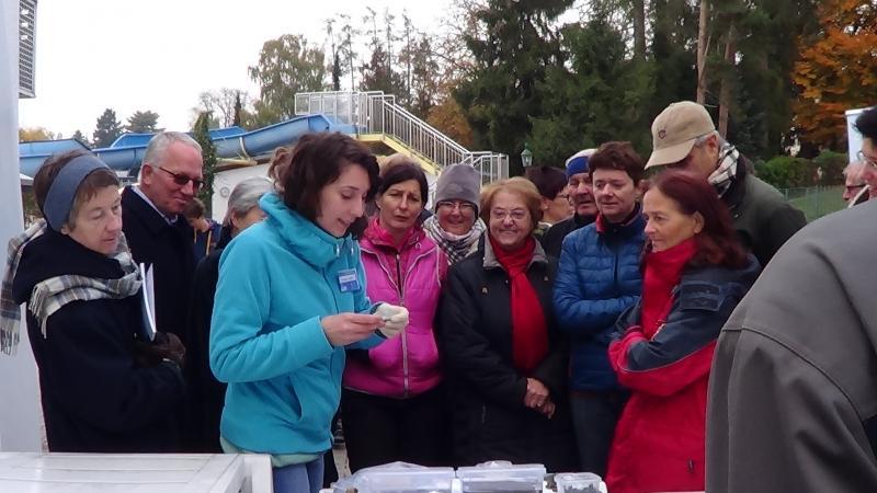 Susanne Heimel vom Oberösterreichisches Landesmuseum präsentiert das Fundmaterial und erklärt, warum die Funde der Unterwasser-Ausgrabung besonders behandelt werden müssen. (Bild: C. Löw - Kuratorium Pfahlbauten)