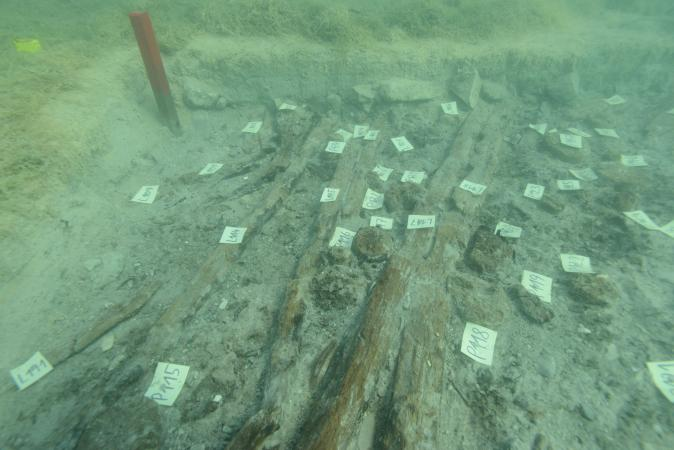 Nicht nur fragile Objekte, sondern auch mächtige Pfähle und liegende Hölzer haben sich unter Wasser erhalten. (Bild: Kuratorium Pfahlbauten)