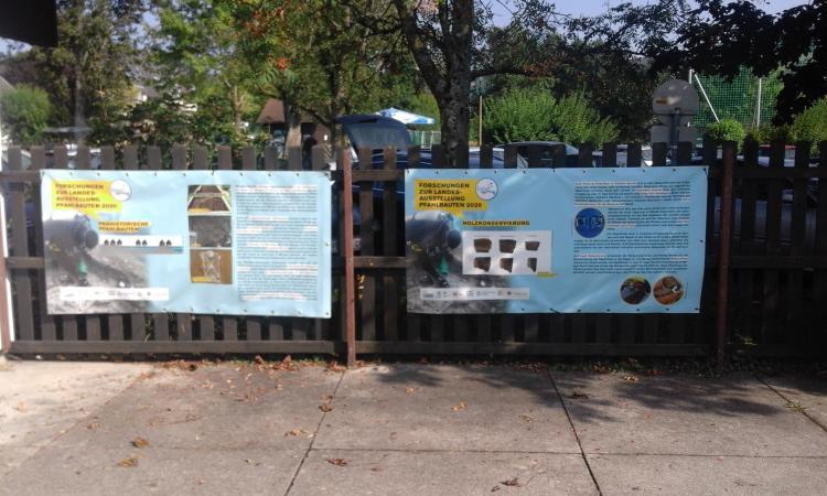 Die Plakate im Strandbad informieren gleich vor Ort, was das Grabungsteam in seiner provisorischen Forschungsbasis so macht. (Bild: Seidl da Fonseca - Kuratorium Pfahlbauten)