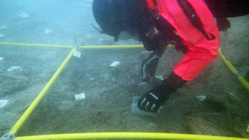 Forschungstaucherin Ester Unterweger bei der Arbeit unter Wasser. (Bild: Kuratorium Pfahlbauten)