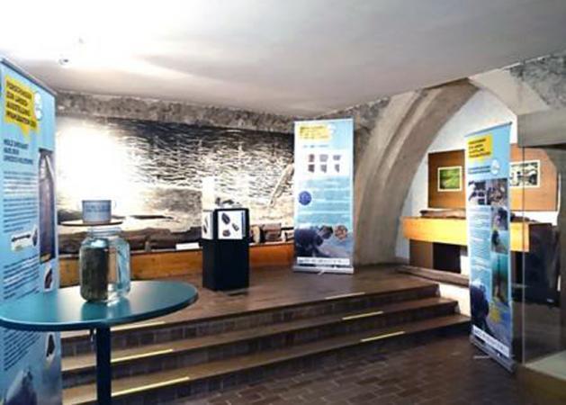 """""""Ein Zeitensprung zu den Pfahlbauten"""" im Pfahlbau-Museum Mondsee (Bild: Hannes Pfeffer - Heimatbund MondSeeLand))"""