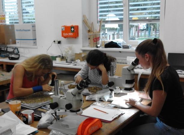 In der Volksschule Attersee wurde die provisorische Forschungsbasis eingerichtet.